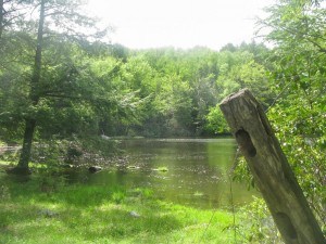 camp_in_massachusetts_3___fence_post_by_the_pond_by_rowyestock-d8xjorh